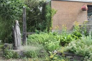Herbs growing herb garden