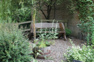 Memorial bench in the herb garden